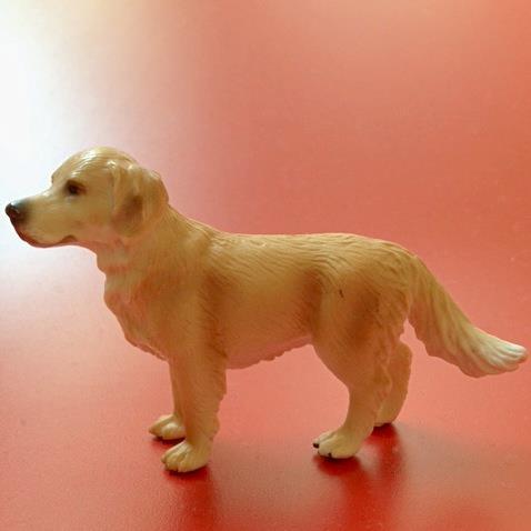 Gutes Tastmodell eines Hundes und doch nur ein Teil der Wirklichkeit.