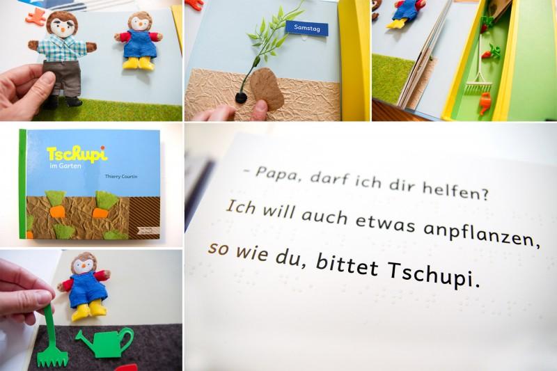 Tschupi-Buchdetails