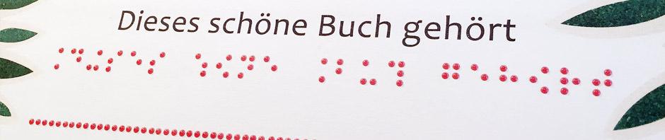 Text im Umschlag eines Buches in Schwarz- und Punktschrift