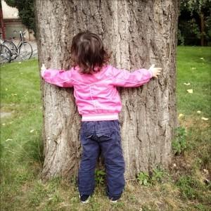 Klicksonar-Echo und Baum gehören zusammen